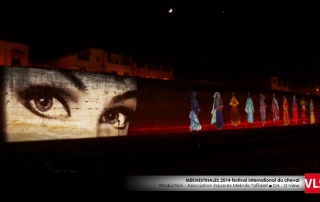projection-mapping-3d-VLS