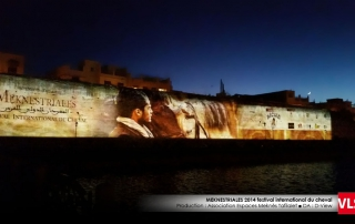 projection_mapping_3d festival-du-cheval