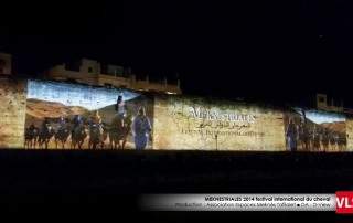 projection_mapping_3d-festival-du-cheval